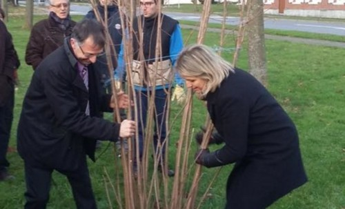 Plantation d'arbres à Sains en Amiénois