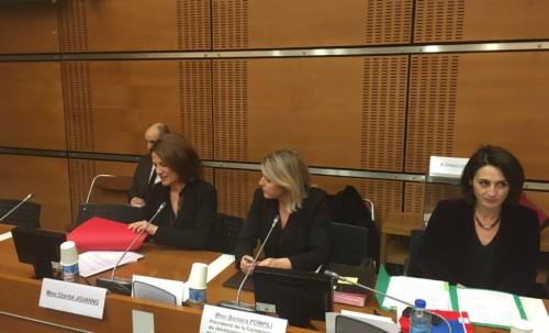 Audition de Chantal Jouanno pour la présidence de la CNDP
