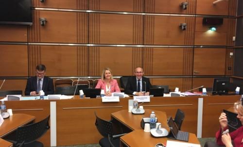 Dernière journée d'auditions de la commission d'enquête sûreté et sécurité des installations nucléaires