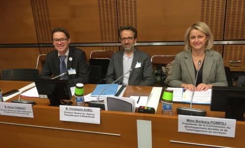 Vers la création d'un établissement public unique pour la nature : regroupement de l'AFB et de l'ONCFS