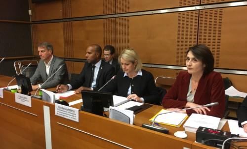 Guyane : pour un développement économique durable