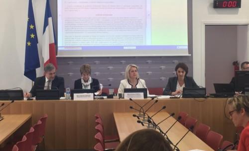 Adoption de mes amendements en commission Développement durable