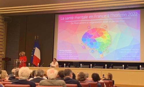 """""""La santé mentale en France : présentation du rapport"""