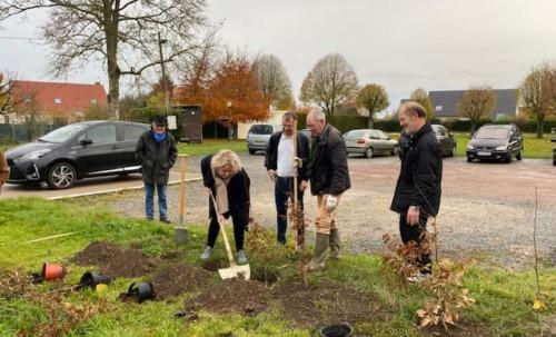 On plante des arbres à Sains en Amiénois !