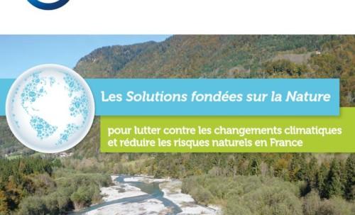 Dérèglement climatique : les solutions fondées sur la nature