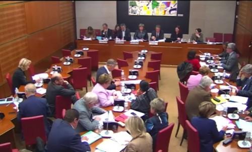 Examen des rapports sur Radio France et la presse numérique